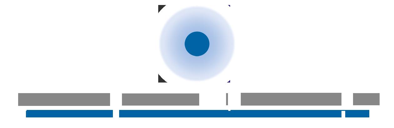 Logo Hornemann Institut